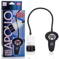Помпа для головки Apollo - Automatic Head Pump автоматическая, цвет черный - California Exotic Novelties