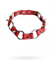 Ошейник №7 СК-Визит с кольцами, цвет красный - Sitabella