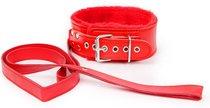Красный ошейник на поводке с ручкой-петлей, цвет красный - Bioritm