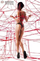 Комплект Asami с веревками для связывания, цвет красный/черный, L - Demoniq