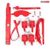Большой набор БДСМ в красном цвете: маска, кляп, зажимы, плётка, ошейник, наручники, оковы, цвет красный - Bioritm