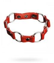 Ошейник №13 СК-Визит с кольцами, цвет красный - Sitabella