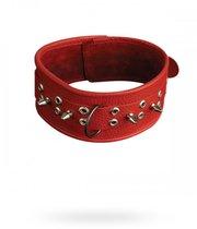 Ошейник №1 СК-Визит широкий с шипами, цвет красный - Sitabella