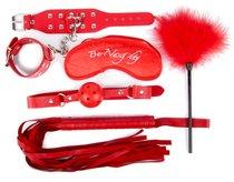 Набор красных БДСМ-аксессуаров из 5 предметов, цвет красный - Bioritm