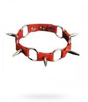 Ошейник №15 СК-Визит с кольцами и шипами, цвет красный - Sitabella